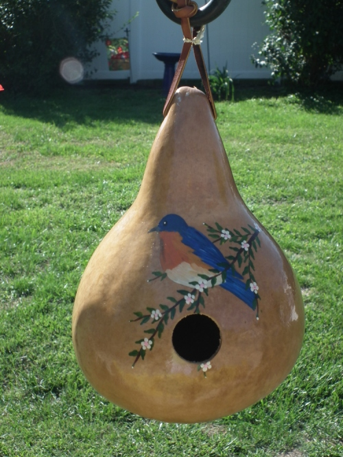 Bird_house_for_blog